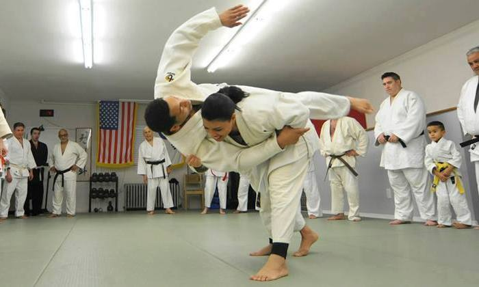 Bronx Judo And Martial Arts - Schuylerville: $26 for $105 Worth of Martial-Arts Lessons — Bronx Judo and Martial Arts
