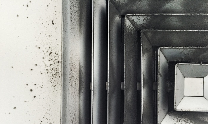 Lone Star Pro Services - Houston: Up to 77% Off Air-duct & dryer vent cleaning at Lone Star Pro Services