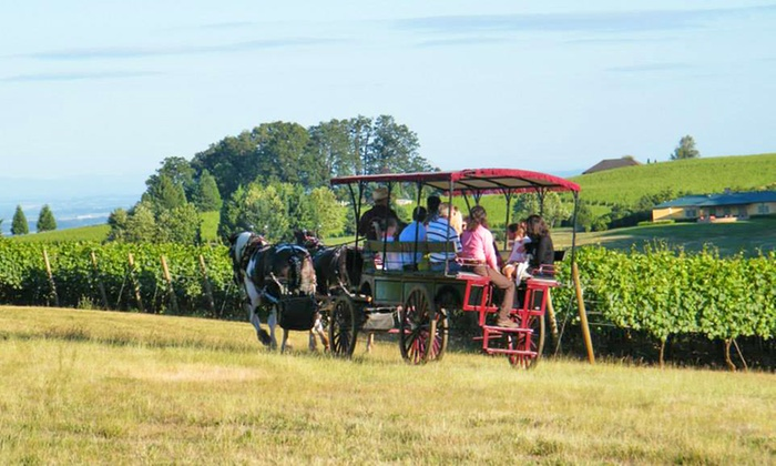 Equestrian Wine Tours - Equestrian Wine Tours: Two-Hour Horse-Drawn Carriage Wine Country Tour for Four or Eight from Equestrian Wine Tours (Up to 42% Off)