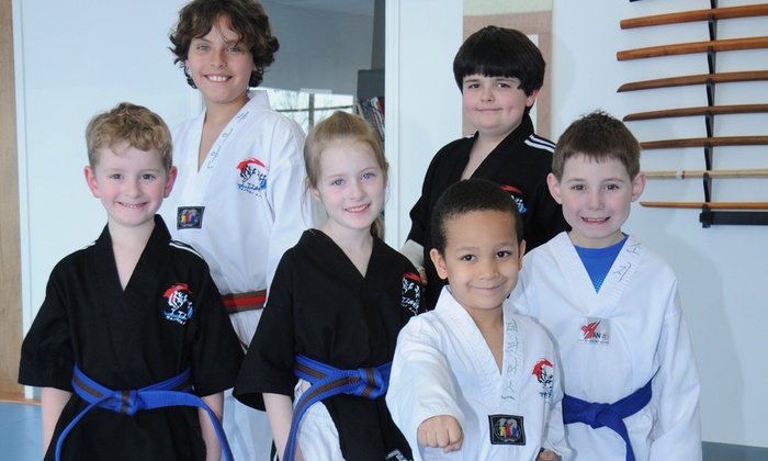 J Tiger Martial Arts - Battlefield: Up to 67% Off Martial Arts Classes at J Tiger Martial Arts