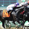 Belmont Park — Up to 20% Off Horse Racing