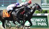 Belmont Park Racing - Belmont Park: Horse-Racing Package for Two or Five at Belmont Park (June 2–30)