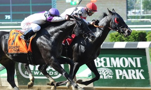 Belmont Park Racing: Horse Racing Package for Two or Five at Belmont Park (April 29–May 29)