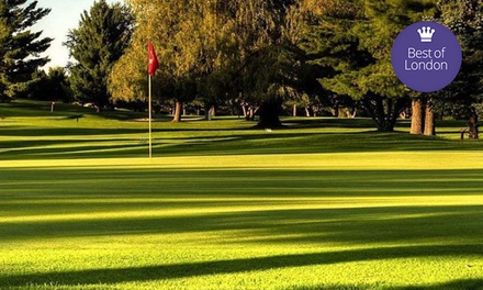 18-Hole Golf Outing for Two or Four with Cart Rental and Lunch at Arkona Fairways Golf Course (Up to 55% Off)
