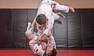 GD Jiu-Jitsu: $20 for One-Month Pass with Classes Twice a Week at GD Jiu-Jitsu ($99 Value)