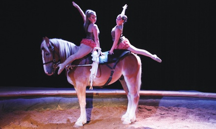 Imagination on Sand at Sable Equestrian Theatre (Up to 51% Off)