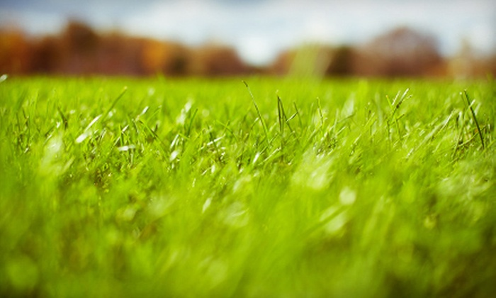 Frontline Lawn & Landscapes, LLC. - Des Moines: Lawn Aeration, Seeding, or Both for Up to 6,000 Square Feet from Frontline Lawn & Landscapes, LLC. (Up to 57% Off)