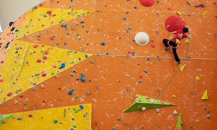 Introductory Bouldering Session for One or Two at Westway Trust (Up to 57% Off)