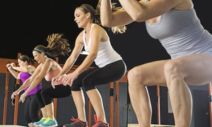 Fit Body Bootcamp: Two-Week Weight Management Programme for One or Two at Fit Body Boot Camp