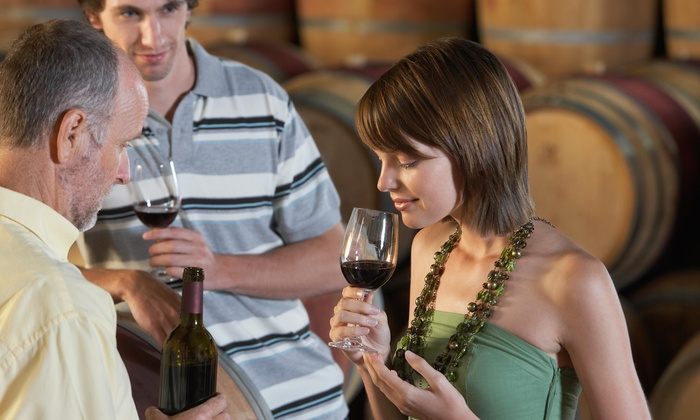 10 Gallon Tours - Fort Worth: $139 for $315 Worth of Customized Wine Tour at 10 Gallon Tours