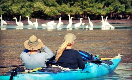 2-Hour Guided Kayak Tour for Two or Four from Calypso Kayaking on Merritt Island (Half Off)