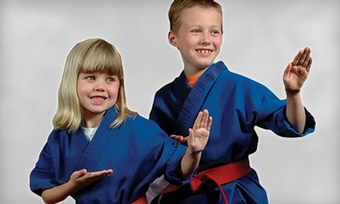 Pro Dojos - Multiple Locations: $19 for 10 Martial-Arts Classes at Pro Dojos (Up to $150 Value)