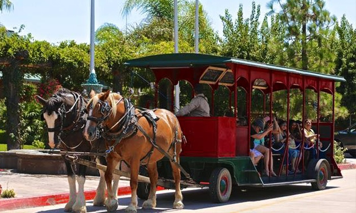 The Temecula Carriage Company - Lorimar Winery: Horse-Drawn Trolley Winery Shuttle for One, Two, or Four from Temecula Carriage Company (Up to 58% Off)