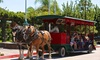 Up to 71% Off Horse-Drawn Trolley Winery Shuttle