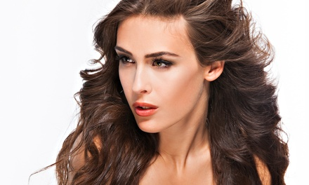 Women's Haircut with Optional Partial or Full Highlights at True North the Hair Studio (Up to 58% Off)