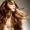 Up to 56% Off Salon Styling and Colouring Packages