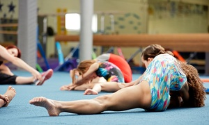 Bayside Sports Academy Inc.: 4-Week Session of Dance & Tumbling Classes or MMA Classes & Membership to Bayside Sports Academy (Up to 53% Off)
