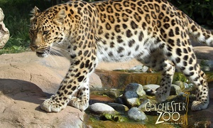 Colchester Zoo: Child (£12.39) or Adult (£17.99) Ticket to Colchester Zoo (20% Off)