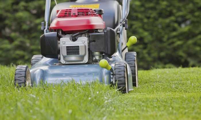 Blue Spruce Cleaning & Landscaping - Salt Lake City: $60 for $100 Groupon — Blue Spruce Cleaning & Yard Care