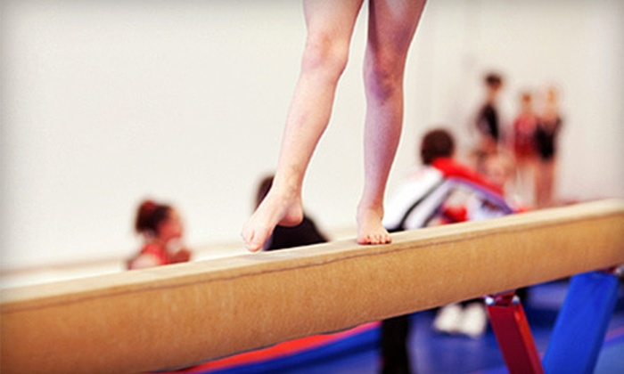 Academy of Sport and Fitness - Richmond Hill: Four- or Five-Day Gymnastics Summer Camp at Academy of Sport and Fitness (51% Off). Nine Dates Available.