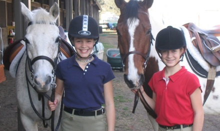 Up to 54% Off Horseback riding Lessons at Pure Potential Farm