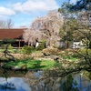 Up to 45% Off to Shofuso Japanese House & Garden