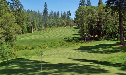 18-Hole Round of Golf and Cart for Two at Apple Mountain Golf Resort (Up to 44% Off). Two Options Available.