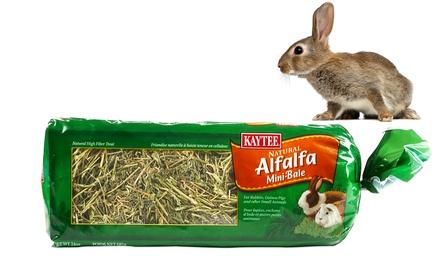 Sun-Cured Alfalfa Mini Bale Pet Food