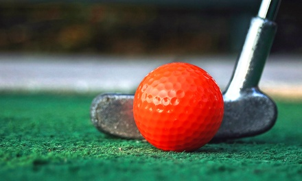 Mini Golf and Hot-Dog Meal for Two or Four at Rinky Dink Family Fun Center in Medina (Up to 53% Off)