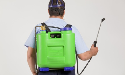 $29 for $75 Worth of Pest Control at Professional Pest Control