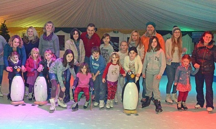 One, Two or Four Adult or Child Tickets for Festive Skating at Hestercombe Gardens