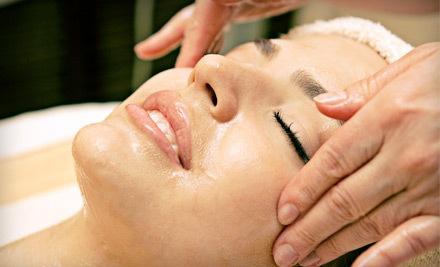1 Facial (an $85 value) - Four Seasons Skincare in Hilton Head