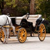 Up to 27% Off Carriage Ride for Four