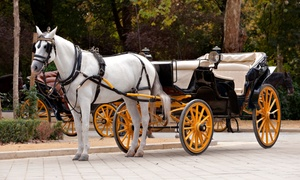 Up to 39% Off Carriage Ride for Two or Four at Ladybug Ranch LLC, plus 6.0% Cash Back from Ebates.
