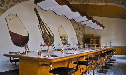 Visita guiada a Bodegas Luzón para 1, 2 o 4 con degustación de vino, tapa, botella de vino y copa desde 12,95 €