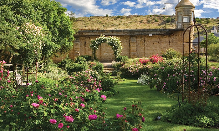 Idaho Botanical Garden - East End: $37 for a Contributing Membership to Idaho Botanical Garden ($75 Value)