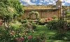 Idaho Botanical Garden - East End: $75 for a One-Year Sustaining Membership at Idaho Botanical Garden ($150 Value)