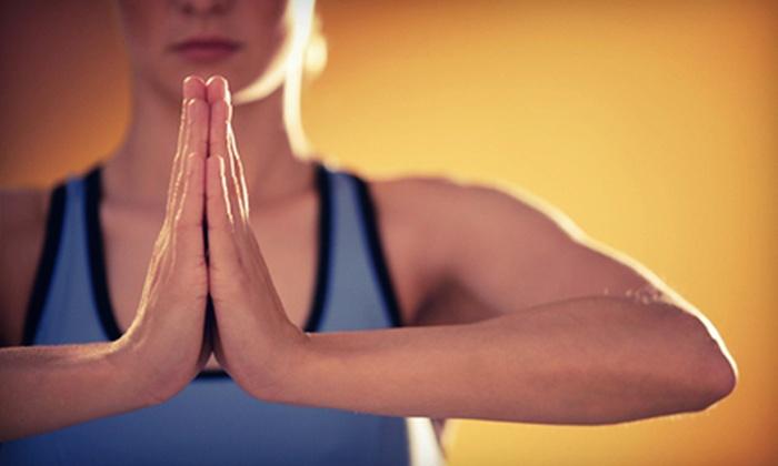 The Yoga Shala - Winter Park: 10 Ashtanga Classes or Four-Week Beginner Ashtanga Course at The Yoga Shala (Up to 74% Off)