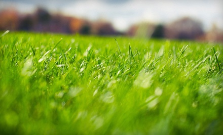 $29 for a Spring Lawn-Care Treatment for Up to 10,000 Square Feet from Top Notch Turf ($75 Value)