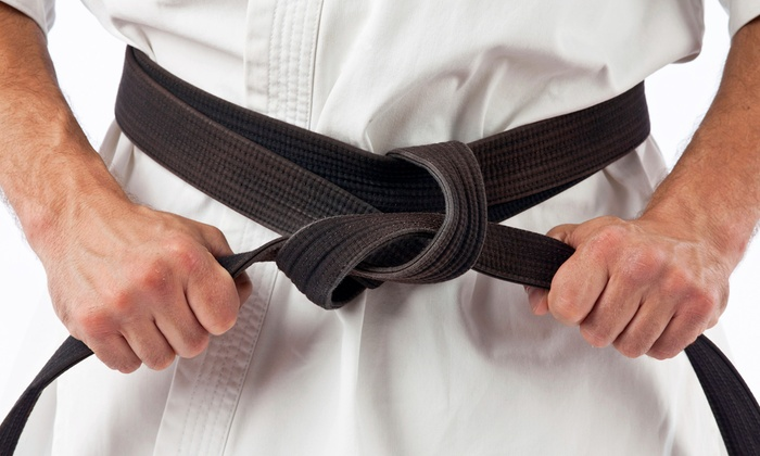 Integrated Martial Arts Academy - Harrisburg: Martial Arts Classes at Integrated Martial Arts Academy (Up to 58% Off). Four Options Available.