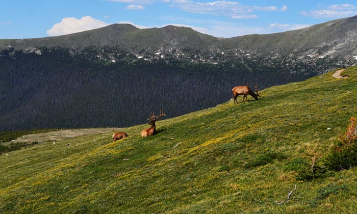 Daven Haven Lodge - Grand Lake, CO: 2-Night Stay in a Cabin at Daven Haven Lodge in Grand Lake, CO. Combine Up to 8 Nights.