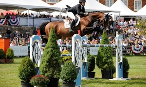 $11 For One Ticket To The 2014 American Gold Cup Show-jumping Event At Old Salem Farm On September 13 Or 14 ($22 Value)