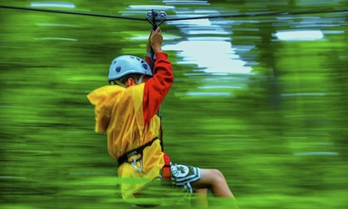 Indian Point Zipline - Indian Point: AdrenaLINE Zipline Tour for One, Two, or Four from Indian Point Zipline (Up to 51% Off)