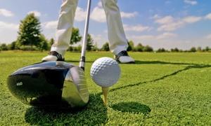Golf Club Parco di Firenze: Fino a 10 lezioni di golf (sconto fino a 84%)