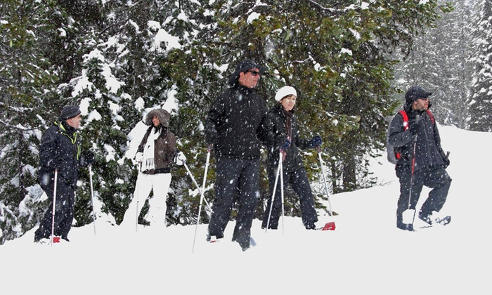 Mt. Hood Adventure - Government Camp: Moonlight or Day Guided Snowshoeing Tour from Mt. Hood Adventure (Up to 50% Off)