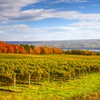 2-Night Stay at Your Choice of Finger Lakes B&Bs