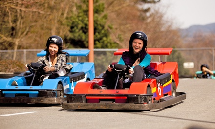 $25 for $50 Worth of Family Attractions at Castle Fun Park