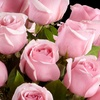 FTD – Half Off Flowers and Gifts