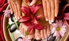 SPECCHIO DI VENERE - SPECCHIO DI VENERE: 3 manicure o in più 3 pedicure con smalto da 19,90 €
