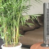 Davis and Grant 29'' Tower Fan